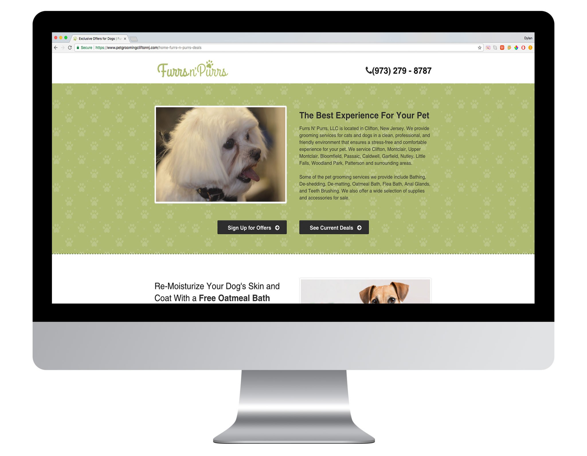 Web Design Portfolio Sample - Furrs N' Purrs